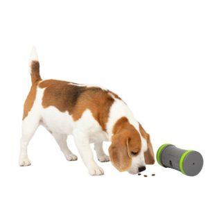 Pet Safe Distributeur de croquettes Kibble Chase