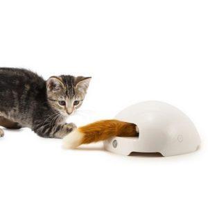 pty19-16445 Jouet Terrier du renard pour chat FroliCat PetSafe