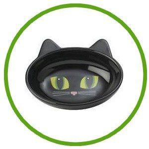 Jouet Distributeur Friandise pour chat
