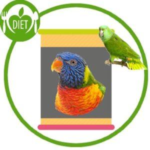 Complément Alimentaire Pour Oiseaux