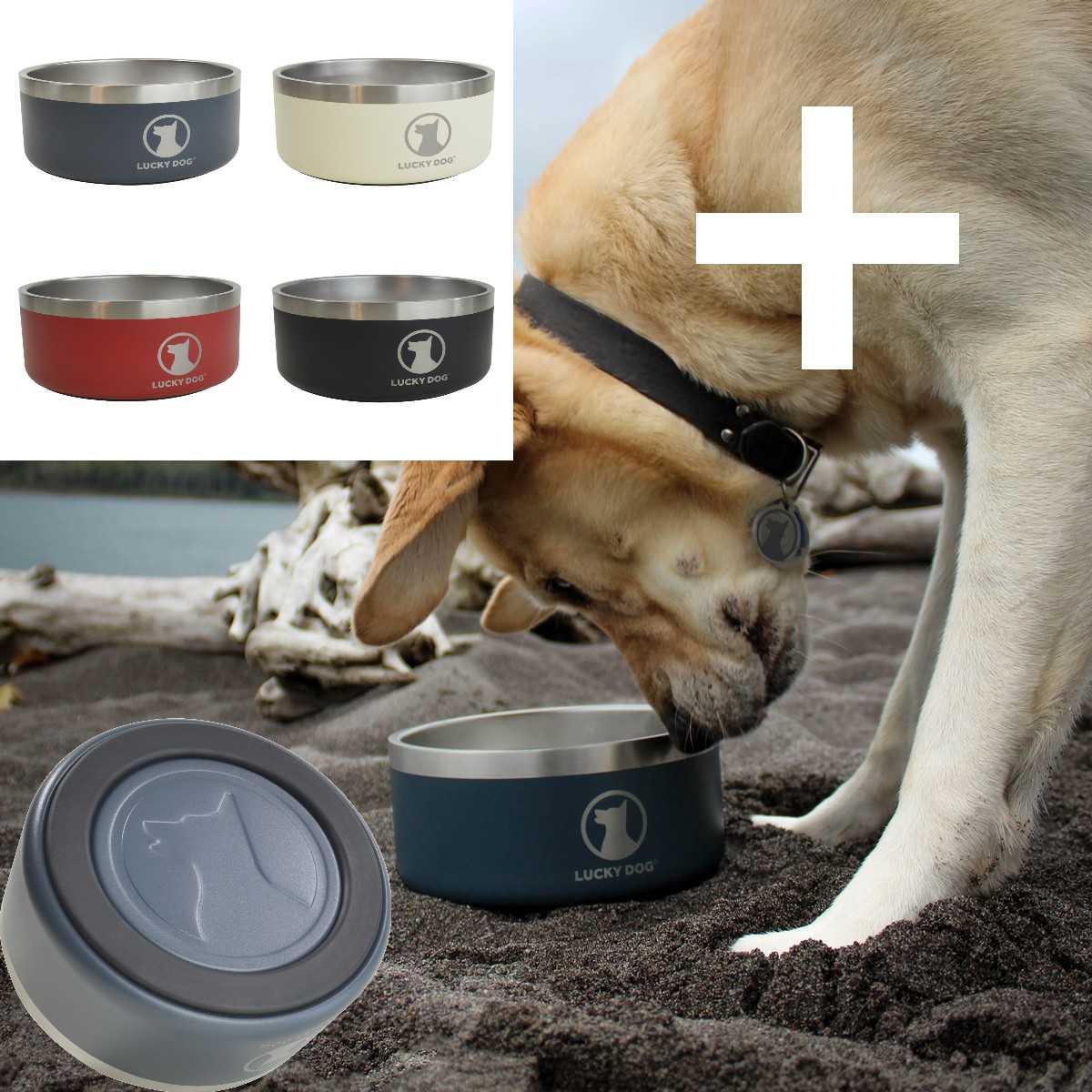 bol thermos design garanti une température constante de ce qui la contient et promet de rester à sa place