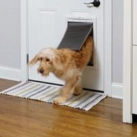 Staywell® Chatière classique à verrouillage magnétique 4 positions chiens