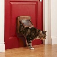 Staywell® Chatière de luxe à verrouillage magnétique 4 positions chat brun